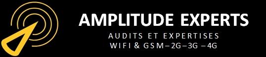 logo amplitude experts